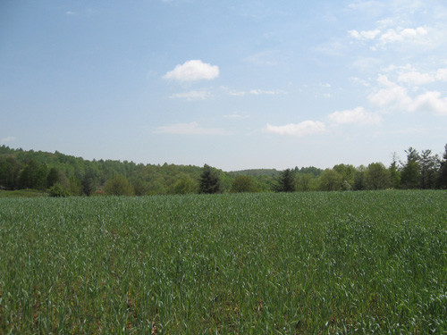 21.56 Acres with Creek and View - Cherry Creek Road - Meadows of Dan, VA