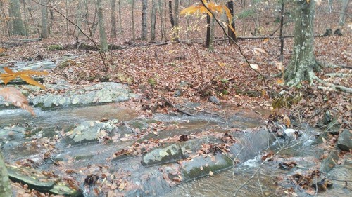 Beautiful Wooded Land with Creek - TBT Harbour Street - Stuart, VA
